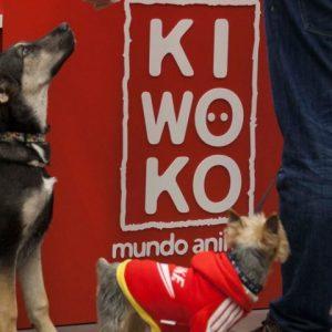 ¡Galería de fotos inauguración de Kiwoko!